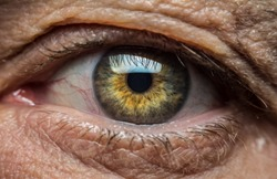 The eye of an old man