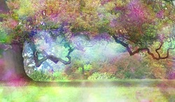 The Fairies Oak Tree - Big old oak with a long twisted branch and an ethereal light in the atmosphere showing a fantasy rainbow colored aura and copy space