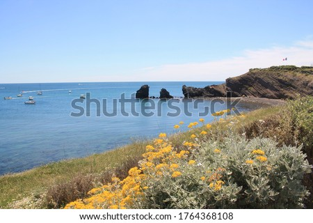The famous Grande Conque beach, a little beach at the end of the Cap d'Agde cove, heraut, France  Photo stock ©
