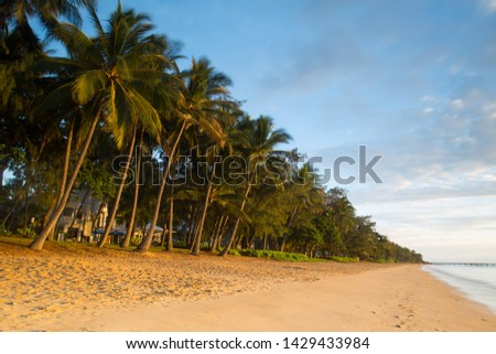 The famous idyllic beachfront of Palm Cove at sunrise in Queensland, Australia #1429433984