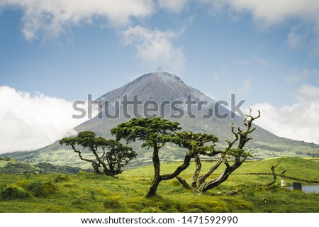 The famous Mount Pico, a volcano, on Pico Island, Azores, Portugal. against blue sky on a summer day Foto stock ©
