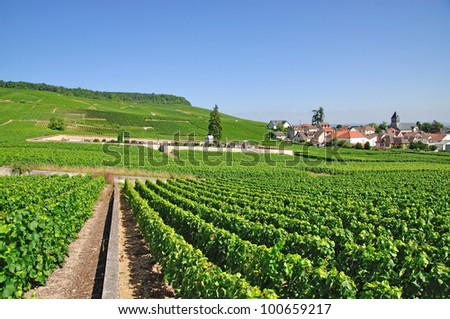 the famous Village of Oger in Champagne Region near Epernay,France