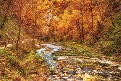 The famous Vintgar gorge Canyon, Bled, National Park Triglav, Slovenia, Europe in autumn, seasonal landscape