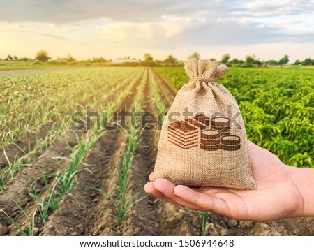 The farmer holds a money bag on the background of plantations. Lending and subsidizing farmers. Grants and support. Profit from agribusiness. Land value and rent. Taxes taxation. Agricultural startups