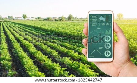 The farmer holds a phone and receives information parameters and data from agricultural field. Advanced technologies in agriculture. Agroindustry and agribusiness. European organic farming. Hi-tech