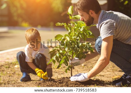 The father and a boy plant a tree #739518583