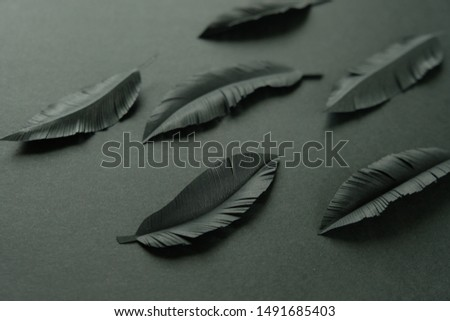 The feathers of a bird made of black paper on black background. Black on black #1491685403