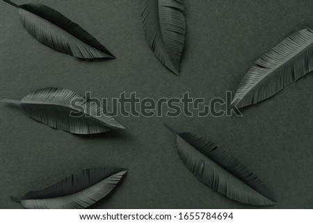 The feathers of a bird made of black paper on black background. Black on black