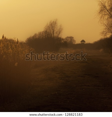 The fens in Cambridgeshire at dusk, England. This marshy region was transformed into an agricultural area with production of grains, vegetables and some cash crops such as rapeseed or canola.