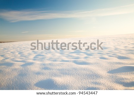 The field covered with snow in a winter season. A sunny day. The field all is covered by high snowdrifts