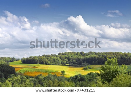 The fields and forests. Landscape.