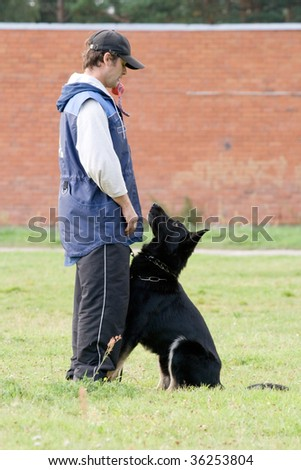 The figurant playing with German shepherd