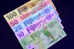 The Fijian dollar (currency sign: FJ$, $; currency code: FJD) is the currency of Fiji. Colorful money notes featuring flora and fauna, Fijian places and industries. $5, $10, $20, $50, $100.