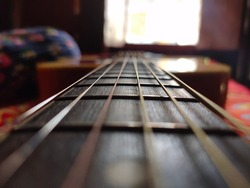 The fingerboard (also known as a fretboard on fretted instruments) is an important component of most stringed instruments. It is a thin, long strip of material, usually wood.