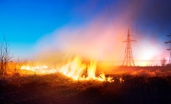 The fire in the field is orange and red hot and dangerous, its flame with heat and poisonous smoke harmful to humans and animals and birds