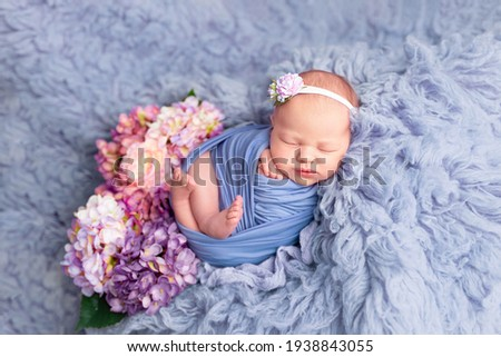 the first photo session of the newborn. newborn. the child lies on a blue blanket. newborn baby girl in hydrangea flowers. photo session of a newborn