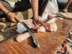 The fish cutter cuts the meat from the spine.  Cutting king fish at a traditional Indian fish market.