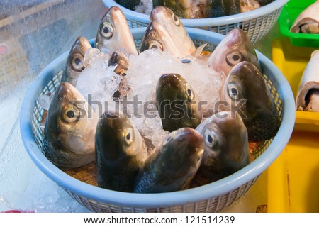 The fish (Milkfish) head in Taiwan market. This is a specility food for Taiwan people.