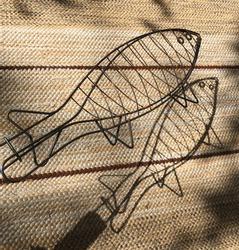 The fish shape gridiron makes a shadow.