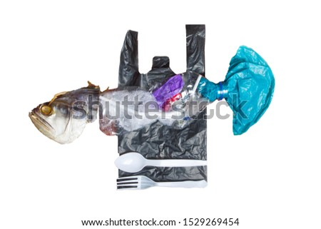 The fish that we consume with plastic are contaminated by the overflowing garbage problem. Isolated from white background