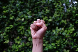 The fist belongs to a small female hand against a green plant background. Often interpreted as a hand gesture to challenge, excited, or dare.