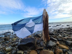 The flag of Antarctica flies from a piece of driftwood on the shore of the ocean.
