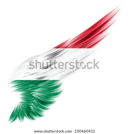 The flag of Hungary on Abstract wing with white background