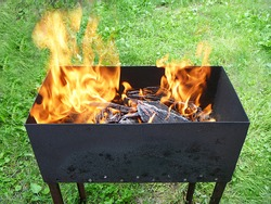 The Flame and coal in iron box on background of the green herb. Preparation for roasted shish kebab outdoors