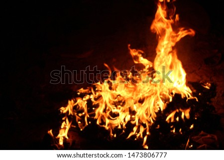 The flames of flaming flames swept through various shapes like hot, energy on a black background. #1473806777