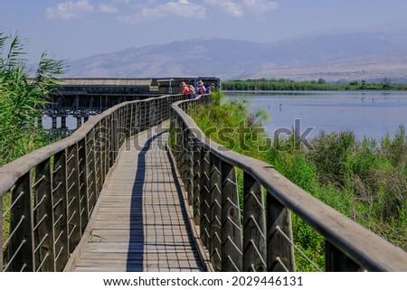 The floating bridge leading to the lake's covered observation platform at Hula Lake, Hula Nature Reserve, Hula Valley, Upper Galilee, Israel.