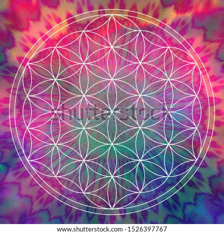 The flower of life made of the finest white circular lines integrated into a brightly coloured background. Sacred geometry as a basis for meditation and a beautiful poster motif.