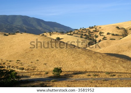 "The foothills west of the mountain town of Tehachapi, California, are know as ""The Golden Hills"""
