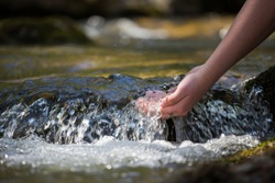 The forest brook, the girl washed her hands in clean water and enjoys her freshness, the natural benefits of drinking water in the world, the Bosnian tributaries.