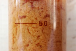 The formation of water-insoluble particles of iron oxalate in the entire volume of the beaker.