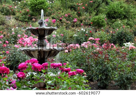 The fountain in the International Rose Test Garden located in Portland Oregon.