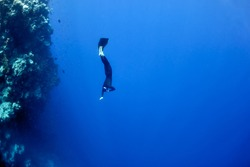 The freediver moves underwater near the coral reef at the depth of Blue Hole. Read Sea, Egypt.