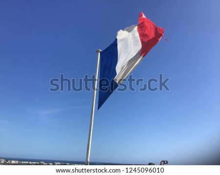 the french flag #1245096010