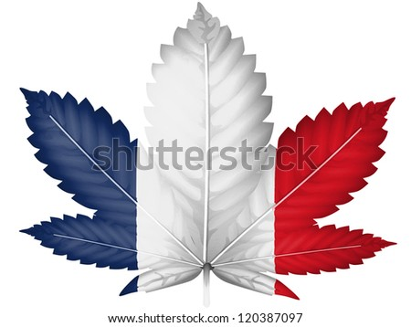 The French flag painted on cannabis or marijuana leaf