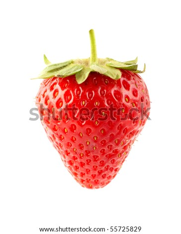 The fresh strawberrie on a clear white background