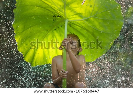 The freshness of the children rural in the rainy season.Happy kid boy playing and hiding under green umbrella nature in rainy autumn day in waterfall or countryside,Thailand,Asia.
