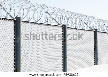 the frozen barbed wire fence