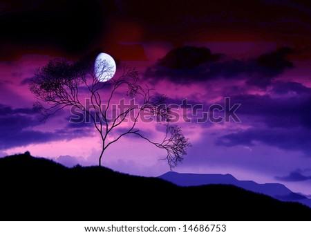 The full bright moon. - stock photo