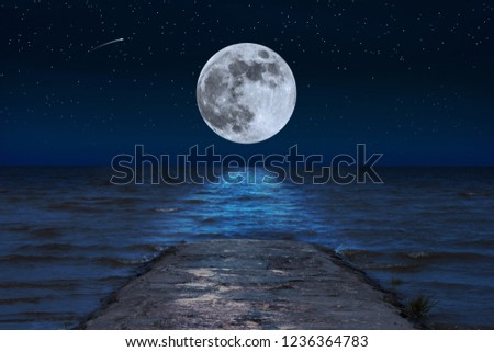 The full moon is reflected in the waves of the sea on a starry night #1236364783