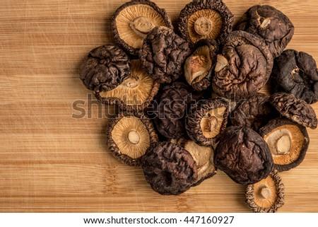 The fungus mushrooms, mushrooms  #447160927