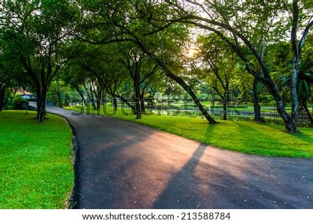 The garden walkways - Shutterstock ID 213588784
