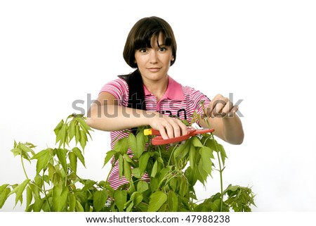 The gardener. The girl-gardener cuts with secateurs a bush branch. Photographing in studio on a white background.