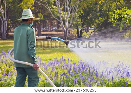The gardener watering the flower