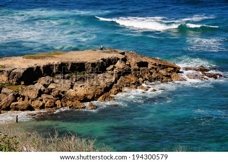The geological features at Bottom Bay Coast Line