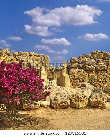 The Ggantija temples, Gozo, megalithic temples in Malta, UNESCO World Heritage Site