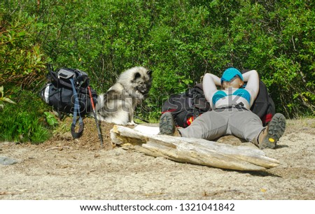 The girl and her dog on a halt. A girl  is lying on the sand with a backpack under her head. The girl's face is covered from the sun with a blue bandanna. Her Wolfspitz sits next to her.